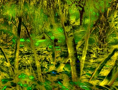 The Waterless Duck Pond (Rob Goldstein-Off/back to work) Tags: life portrait color colors yellow photomanipulation landscape highcontrast surreal fantasy secondlife saturation highsaturation expressionist second photomerge dreamy abstracts metaphor glance catchy marvelous ourtime experiements photomorphing