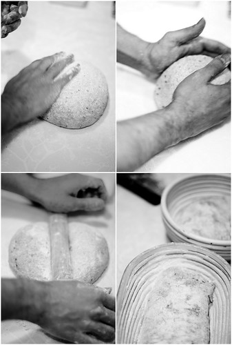 tender o pão em forma de carcaça (fendu)