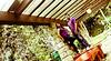 Raymark & Shiela Prenup (caranzophotography) Tags: wedding portrait seascape engagement couple ceremony cebu nuptials pcc weddingphotographer imag weddingphotographers onlyinthephilippines cebuphotographers prenuppictorial pinoykodakero teampilipinas cebuwedding caranzodigital rolandcaranzo kabayanfilamfotogs cebuphotographer larawangpinoy philippinephotographicsociety postnuppictorial caranzodigitalphotography caranzodigitalphotogrpahydesign anuadaalcalanuptials marksheilaprenup
