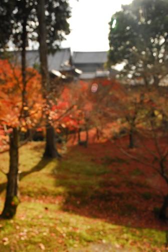 entering tokufuji by asihsimanis