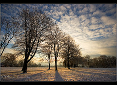 Earth and sky......... (Chrisconphoto) Tags: park trees sunset mist snow cold freezing chrisconway goodlight