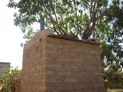 Roof and ventilation pipe (Sustainable sanitation) Tags: construction mud pipe adobe blocks pan vault household slab burkinafaso squatting uddt