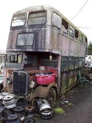 130120111668 (uk_senator) Tags: scrap yard breakers wrecked bus aec ddv446 herts hertfordshire uksenator london transport public 1939 regal