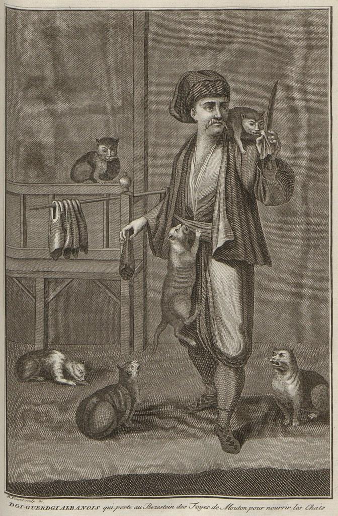 Dgi-Guerdgi Albanois qui porte au Bezestein des Foyes de Mouton pour nourrir les Chats (V. 5)