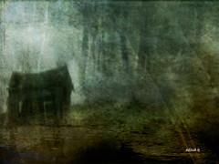 El olvido ....    Oblivion .... (tan.solo_milenia .) Tags: art contemporary ourtime artdigital artistictreasurechest