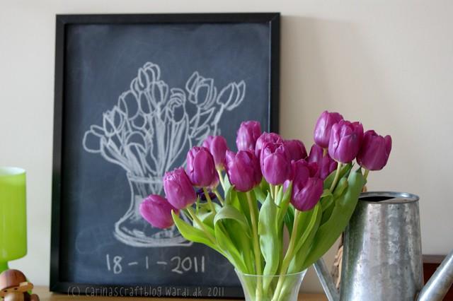 Tulips :: January 18 - 2011
