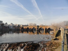 Devorgilla Bridge.Dumfries (stonetemplepilot5) Tags: river scotland whitesands ducks dumfries nith devorgillabridge sonycybershotdsch55