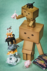 Addicted to MewMew Tower (Ali Tse) Tags: toy toys amazon gashapon limited capsuletoy danbo  revoltech jfigure danboard   mewmewtower
