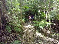 Mount Nebo Walking Track