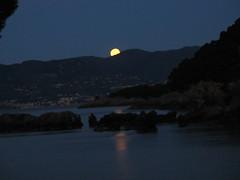 FIASCHERINO TELLARO - LUNA ALL'ALBA SUL MARE (RENAULT_4) Tags: italia mare alba luna laspezia lerici tellaro fiascherino