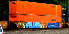 palm - enaps PHD '16 (timetomakethepasta) Tags: palm palmr enaps lsd phd savek freight train graffiti intermodal art ttx