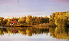This spring,  the weak man call the fall. (BirgittaSjostedt) Tags: autumn fall color water reflection beauty colorful landscape panorama scene view serene outdoor sun texture paint painted unique art sunny sweden birgittasjostedt magicunicornverybest ie daarklands ~themagicofcolours~xiv