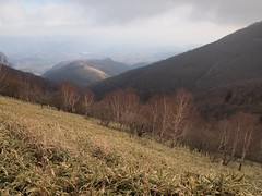 Mt. Akagi (Kurobi-peak)