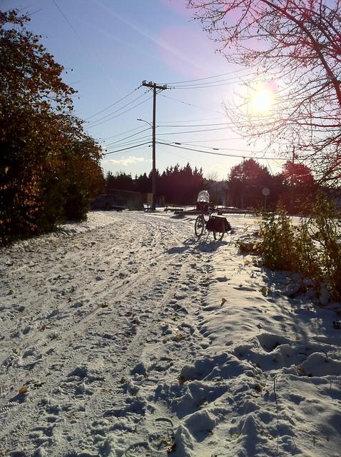 snowpocalypse 2.0!