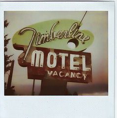 timberline motel 2 (bob merco) Tags: sign vintage polaroid motel retro instant polaroidspectra motelsign supermerc81 bobmerco panpola bobmercogliano impossibleprojectsoftonesilm
