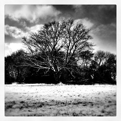 Project365/Day27-Cold #iphoneography #photography #HDR #Sheffield