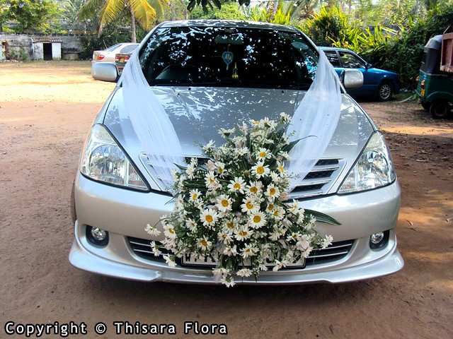 Wedding car decorations wedding photography modern wedding car decoration ideas image junglespirit Image collections