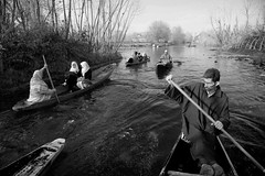 0940 Rowers on Dal Lake--Kashmir , India (ngchongkin) Tags: india niceshot harmony showroom soe shiningstar nationalgeographic littleprince musictomyeyes dallake favoritephotos goldheart thegalaxy theoldport photopassion flickrsmileys anythingyoulike peaceaward avpa flickrhearts flickraward flickrbronzeaward crystalawards momentarylapseofreason artistsoftheyear dazzlingshots flickridol absoluteblackandwhite flickrroseawards flickrestrellas beautifulaward thebestshot spiritofphotography discoveryphotos qualifiedmembersonly 469photographer thebestshots grouptripod photographerparadise artofimages angelawards legacygallery richardsgold youandtheworld pegasusaward flickrsgottalent bestpeopleschoice richardsqualitybwandsepia flickraward5 mygearandme mygearandmepremium fireworksofphotos flickrawardgallery fabulousplanetevo goldstarawardlevel1 2heartsaward flickrbronzetrophy excellentgallery framebangladesh museodefotos highqualityimagequaifiedmembersonly digitographer photohobbylevel1 thethreeangelslevel1 theworldinthemyeyes artistoftheyearlevel3 artistoftheyearlevel4 admintalkinternational artistoftheyeardoubleplatinum