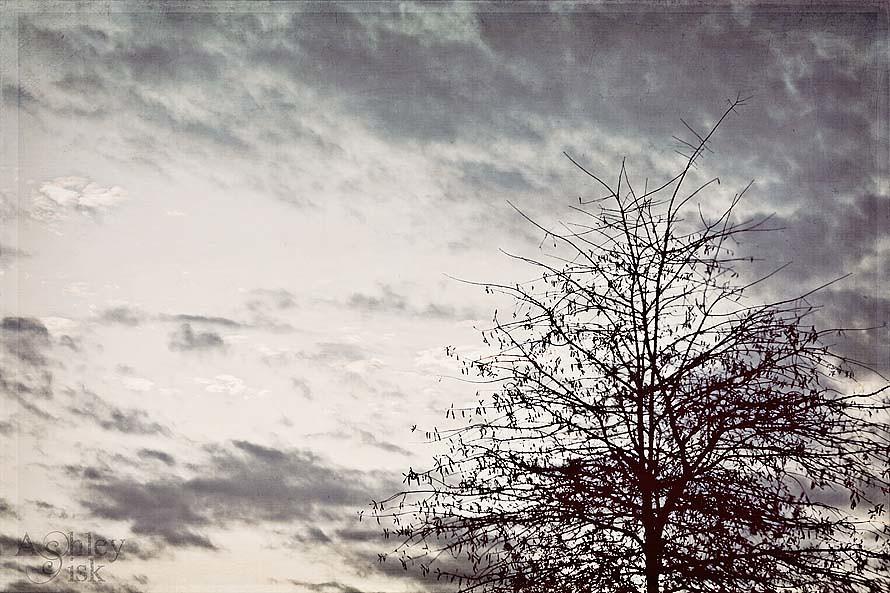 Moody Sky RS