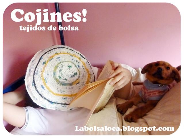 Cojines hecho de bolsas reutilizadas 6 mil pesos