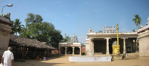 Brahma (Vanni tree), Thayar shrine and Perumal shrine 1