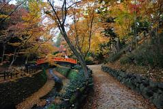 2010_kyoto_069