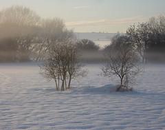 Snow scene, Doe Lea valley (WayShare) Tags: snow carr derbyshire doe vale valley lea fields