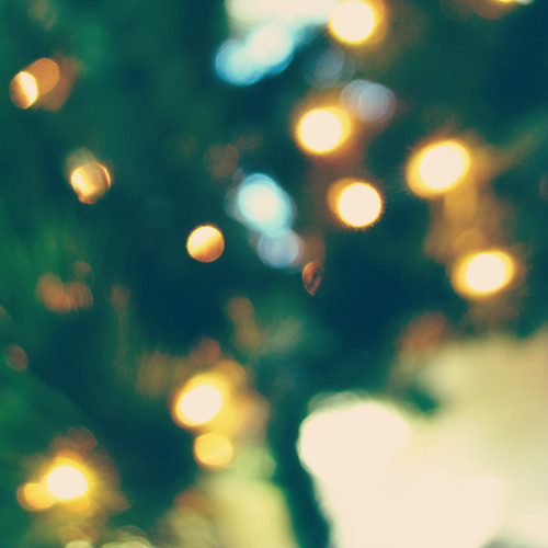 tree glow {1}