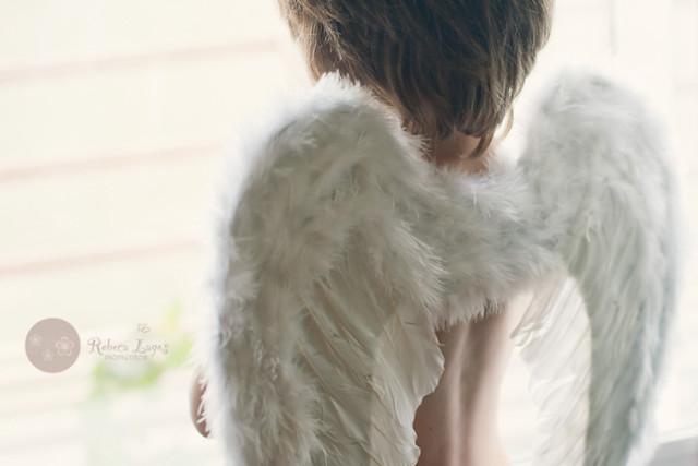 Angels (344/365)