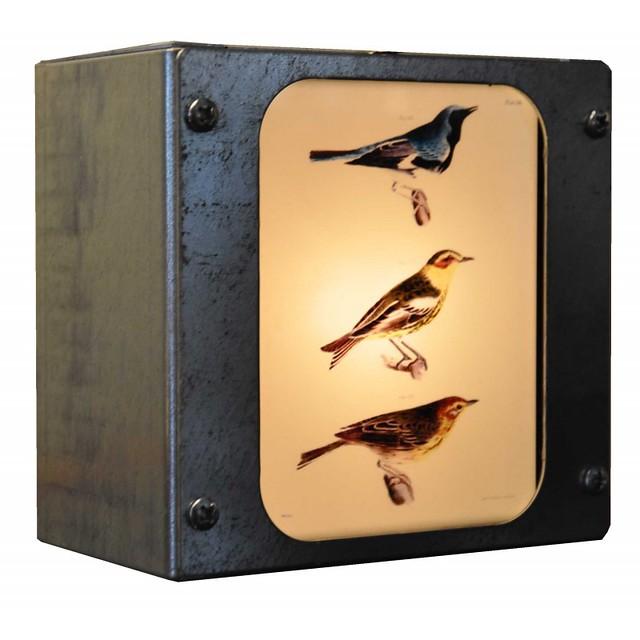 bird plate box