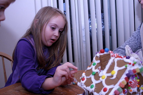 Butterfly Gingerbread House