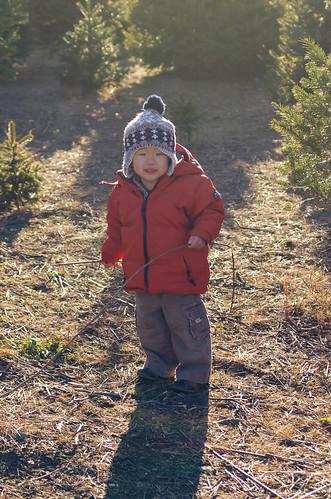 xmas-tree-farm-2010-4