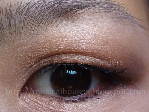daiso shiny powder brown eye1