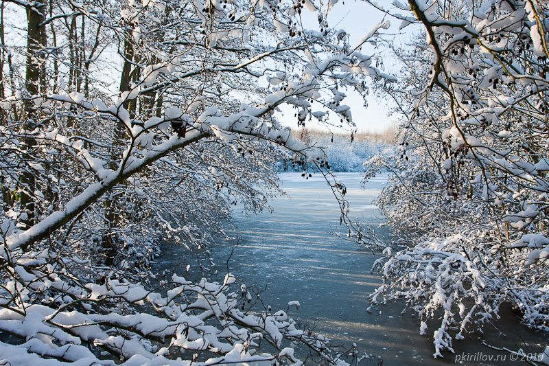 Winter in Rotterdam