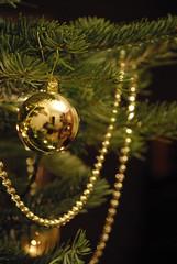 Golden balls (SiCrit) Tags: xmas pinetree reflections christmastree christmasdecorations needles goldbaubles