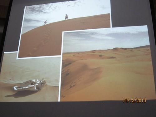 Sicaa分享的「蒙古」沙漠
