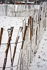 Happy Christmas Eve Fence Friday (Joebelle) Tags: park winter snow canon geotagged centralpark geotag eastham hff 40d canon40d fencefriday