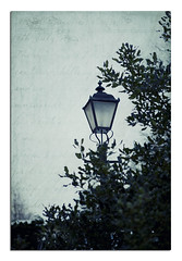 Of Christmas Past (*iNiNa* Tracey Christina Photography) Tags: winter lamp lamppost hss hollybush sliderssunday