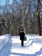Central Park, NYC Blizzard 2010 (rosinberg) Tags: nyc winter centralpark manhattan snowstorm blizzard december2010