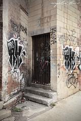 RK9, muk, (AngieBphoto) Tags: newyorkcity bridge newyork cake brooklyn graffiti utah juice duet traintracks tracks murals ewok elbowtoe williamsburg 17 spraypaint tribute wish graff neckface dee yonkers rem dart trap backfat westchester hert 5points builiding jayr miss17 jick 5ptz rk9 dyrect rem311 wisher wish914 ms17 faip