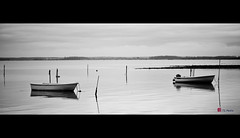 The last try (dank71) Tags: winter bw water strand boats vinter quiet shore motor poles shallow vand stille bde sorthvid koldt ple havblik phngsmotor