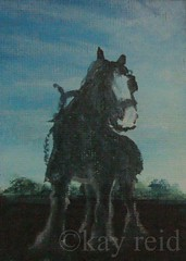 ACEO Working Horse