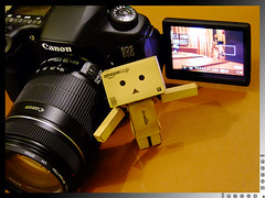 "Explored:  ""Danbo Loves Articulation"" (lennox_tpc) Tags: world life canon point toys eos amazing still shoot uv explore filter finepix fujifilm dslr discovery articulated pns danbo kenko 18200mm explored 18135mm 60d danboard s200exr"