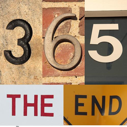 Final-365 - 365:365