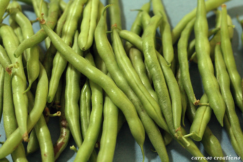 PAD 02.01.11 Beans