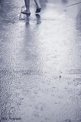 (Aljazi Al-Akoor) Tags: rain aljazi
