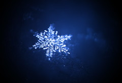 Snowflake (Anup Holey) Tags: snowflake snow minneapolis hexagon icecrystal canont1i