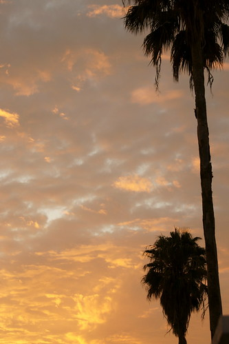 5:365 Sunset