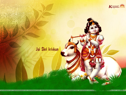 beautiful wallpapers of lord krishna. Sri Krishna ji Wallpapers,