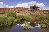 وادي ترج-النماص (Faisal Al-shehri) Tags: nikon valley abha faisal aseer d90 فيصل وادي ابها الشهري عسير الجنوب النماص alshehri ٢٠١٠ ترج الفرعه بدوه